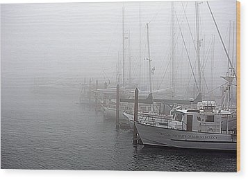 Foggy Morning In Charleston Harbor Wood Print by AJ  Schibig