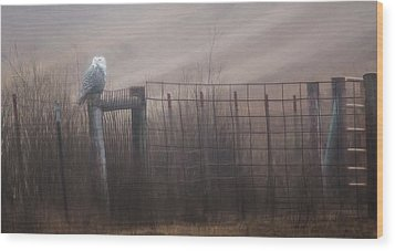 Wood Print featuring the photograph Foggy Morning  by Kelly Marquardt