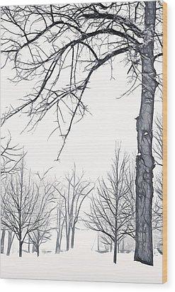 Foggy Morning Landscape - Fractalius 6 Wood Print by Steve Ohlsen