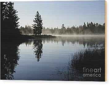Foggy Morning Wood Print by Larry Ricker