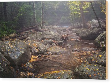 Wood Print featuring the photograph Foggy Morning by Tyson and Kathy Smith