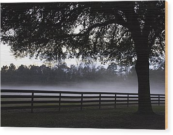 Foggy Pasture Wood Print by Kathy Ponce