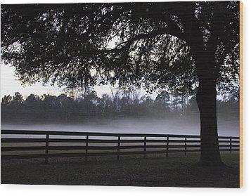 Foggy Pasture Wood Print