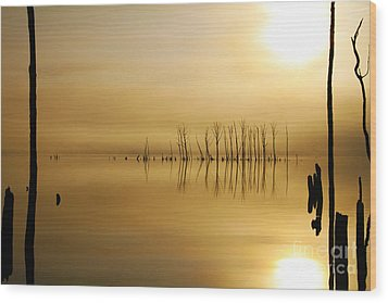 Foggy Rise Wood Print by Roger Becker