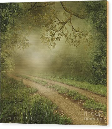 Foggy Road Photo Wood Print by Boon Mee