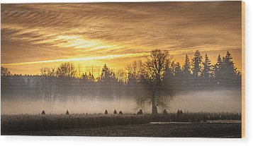 Foggy Sunrise Wood Print by Cassius Johnson