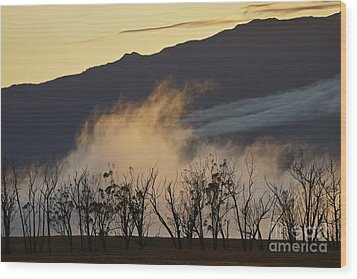 Foggy Sunset Wood Print