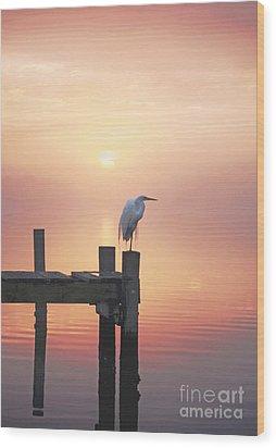 Foggy Sunset On Egret Wood Print by Benanne Stiens