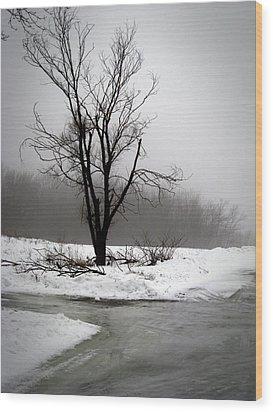 Foggy Tree Wood Print