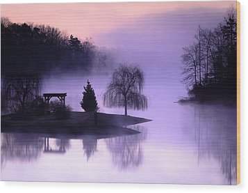 Foggy Twilight Wood Print by Thomas Pettengill