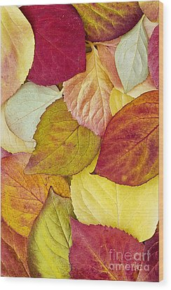 Foliage Quilt Wood Print by Alan L Graham