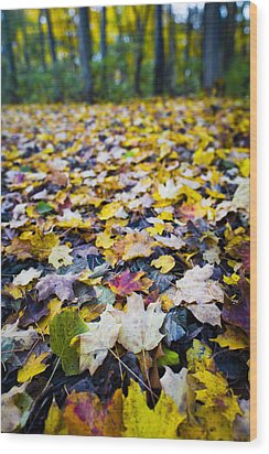 Wood Print featuring the photograph Foliage by Sebastian Musial