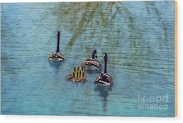 Follow The Leader Baby Wood Print by Peggy Franz