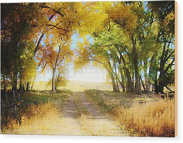 Wood Print featuring the photograph Follow Your Heart by Shirley Heier