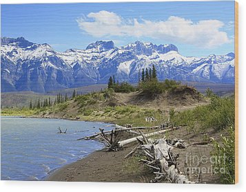 Following The Athabasca River Wood Print by Teresa Zieba