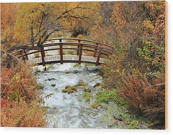 Foot Bridge At Cascade Springs. Wood Print by Johnny Adolphson