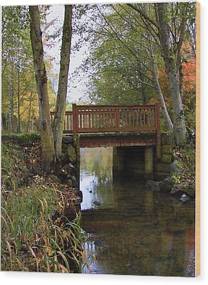 Foot Bridge Wood Print by Ron Roberts