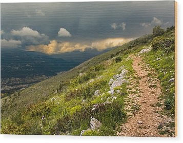 Foot Path Into The French Alps Wood Print