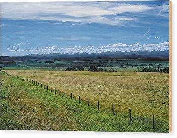 Foothills Of The Rockies Wood Print by Terry Reynoldson