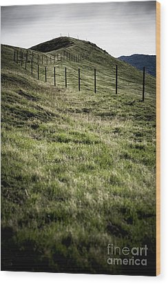 Foothills Of The Tehachipis Wood Print by Rich Collins