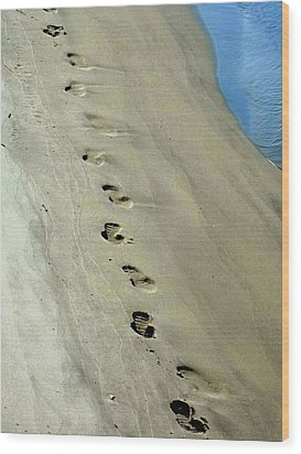 Footprints At Breech Inlet Wood Print