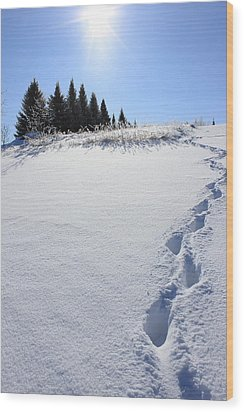 Footprints In The Snow Wood Print by Penny Meyers
