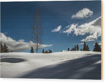 Footprints In The Snow Wood Print by Randy Wood