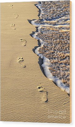 Footprints On Beach Wood Print by Elena Elisseeva