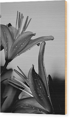 For The Love Of Lillies Bw Wood Print by Lesa Fine