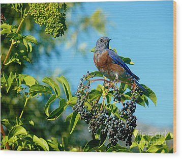 For You - Blue Wood Print by Jacquelyn Roberts