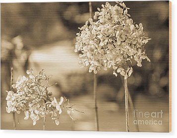For You Wood Print by Sue OConnor