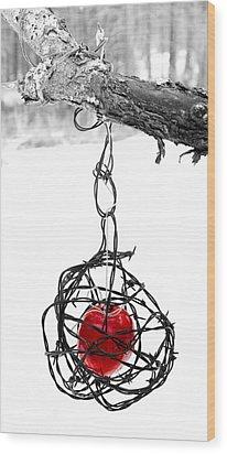 Forbidden Fruit Wood Print by Aaron Aldrich
