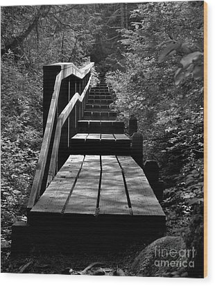 Forest Boardwalk Wood Print by Laura  Wong-Rose
