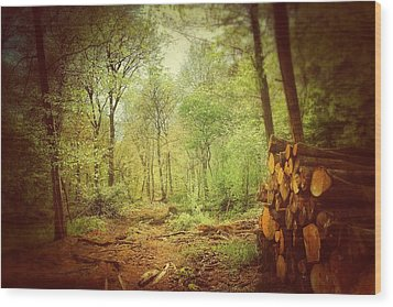 Forest Wood Print by Daniel Precht