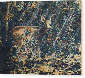 Forest Fawn Wood Print by Dan Terry