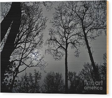 Forest Fingers Wood Print