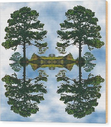 Forest For The Trees Wood Print by Wendy J St Christopher