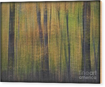 Forest Glow Wood Print by Susan Candelario