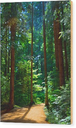 Forest Heights Wood Print by John Robichaud