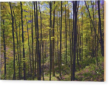 Forest Wood Print by Lanjee Chee