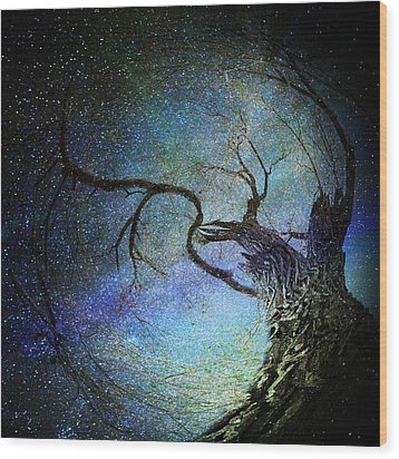 Forest Magic Wood Print by Michele Cornelius