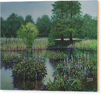Forest Park Pond Scene Wood Print