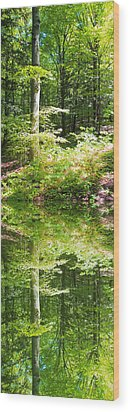 Wood Print featuring the photograph Forest Reflections by John Stuart Webbstock