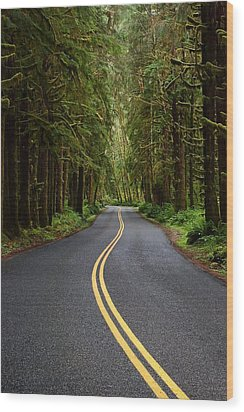 Forest Road Wood Print by David Andersen