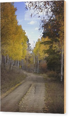 Forest Road In Autumn Wood Print by Ellen Heaverlo