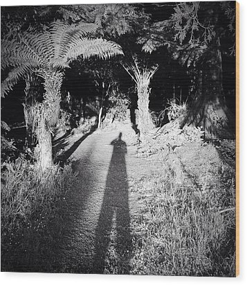 Forest Shadow Wood Print by Les Cunliffe
