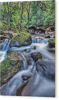 Forest Waterfall Wood Print by John Swartz