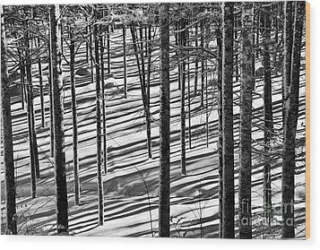 Forest's Shadows Wood Print by Yuri Santin