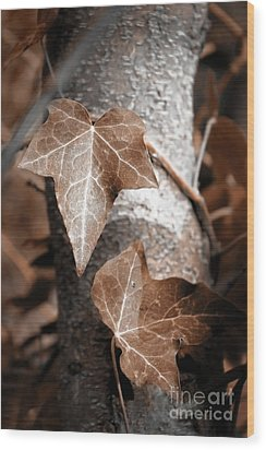 Wood Print featuring the photograph Forever Entwined by Ellen Cotton