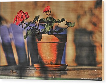 Wood Print featuring the photograph Forever Flower by Kandy Hurley
